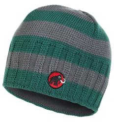 Mammut Passion Beanie one size / bottle-titanium