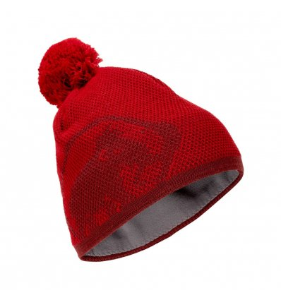 Mammut Snow Beanie one size /scooter-dark scooter